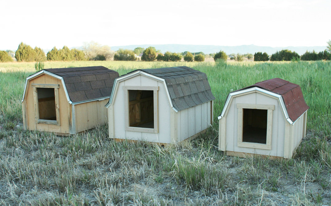 Dog Houses Archives Innovative Structures Inc