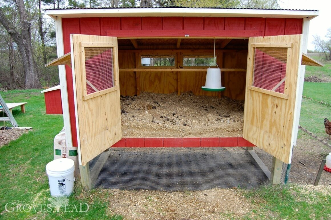 Complete Guide for Raising Backyard Chickens 18