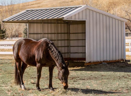 portable horse shed that can be moved to different pastures