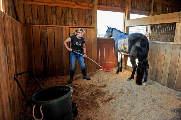 lady cleaning out a barn stall